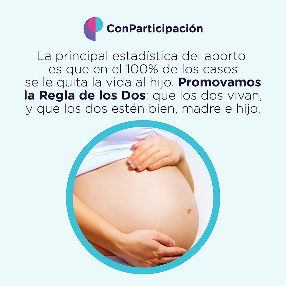 Principal estadística del aborto