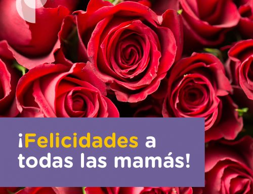 ¡Felicidades a todas las mamás!