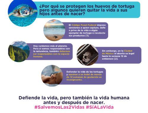 No puedes estar a favor de la Tierra y a favor del aborto.
