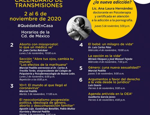 Transmisiones del 2 al 6 de noviembre de 2020.