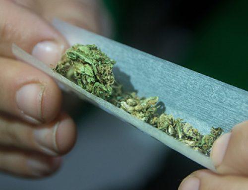 Testimonios sobre los daños de la marihuana (parte 4)