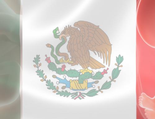 El gobierno de México y el respeto al derecho a la vida ante la influencia de grupos proaborto