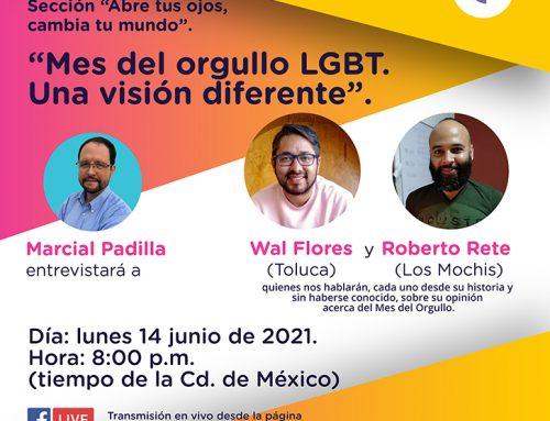 Mes del orgullo LGBT. Una visión diferente.