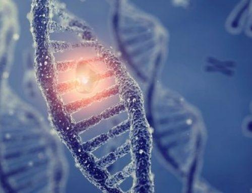 Defensa del derecho a la vida desde la bioética