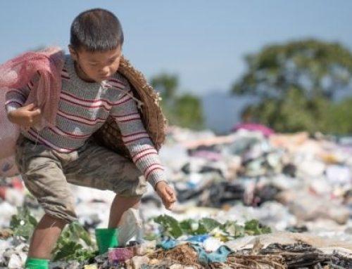 SIPINNA propone estrategias para erradicar el trabajo infantil